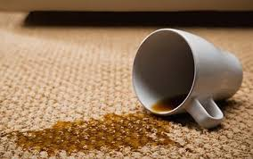 Carpet stain coffee
